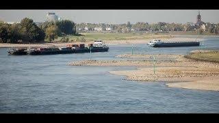 ZU WENIG REGEN: Niedrigwasser im Rhein stellt Schifffahrt vor Probleme