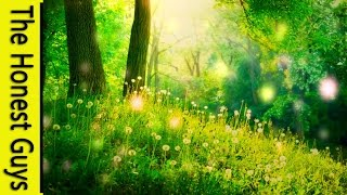 GUIDED MEDITATION - A Fairy Blessing & Healing Meditation (Remastered)