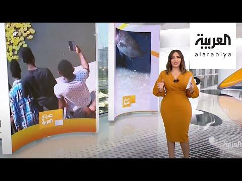 العرب اليوم - شاهد: حجر