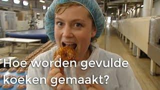 Hoe Worden Gevulde Koeken Gemaakt? | Doen Ze Dat Zo | Het Klokhuis