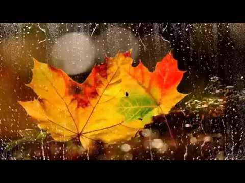 Осенняя боссанова