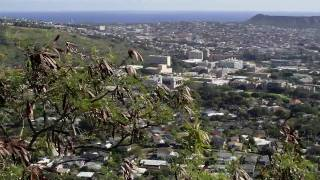 preview picture of video 'Hawaii sightseeing up Tantalus Mountain with Mini Cooper'
