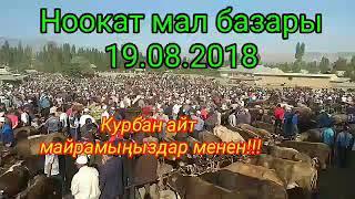 Ноокат мал базары 19.08.2018