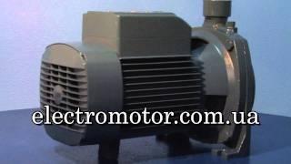 Насос Pedrollo CP170 от компании ПКФ «Электромотор» - видео