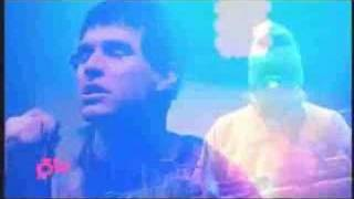 Animal Collective - In the Flowers (Live @ Hove Festival 2008)