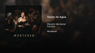 Ricardo Montaner Ft  Farruko   Vasito De Agua (Official Audio 2019)