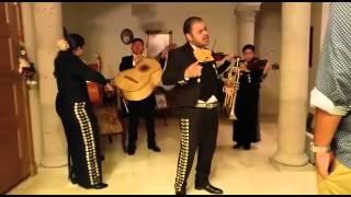 Somos Novios - Mariachi Sol Azteca de McAllen, TX