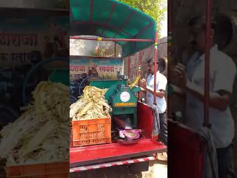 Nandi Sugar Cane Crusher