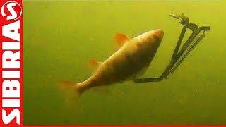 Рыбалка с капканом на щуку