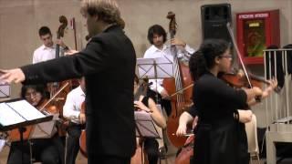 Georg Philipp Telemann  Concerto Per Viola Archi E Basso Continuo In Sol Maggiore  TWV 51G9