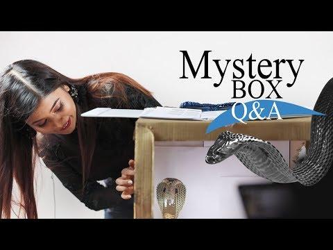 Mystery Box Q&A   Toya