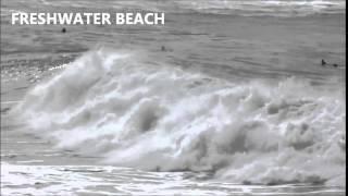 Freshwater Beach 2