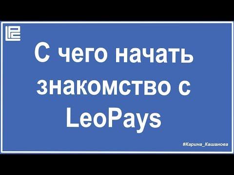 С чего начать знакомство с LeoPays