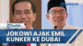 Rencana Ridwan Kamil Ngantor di Kabupaten Bekasi Mundur, Diajak Jokowi Kunjungan Kerja ke Dubai