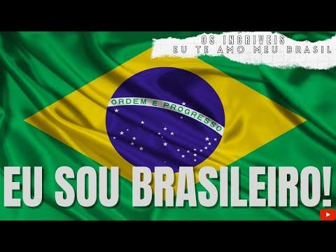 Música Eu Te Amo Meu Brasil
