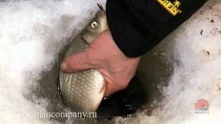 Смотреть онлайн Зимняя рыбалка на крупного карася