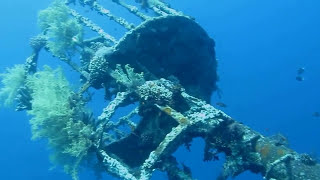 preview picture of video 'CEDAR PRIDE WRECK SHIP   AQABA JORDEN'