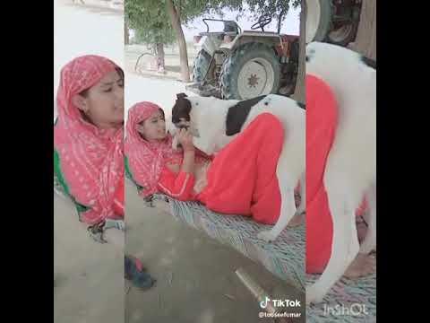 Mera Rashke Qamar ! Desi Girl ! Dance With ! Dog ! 2018 Mix Version