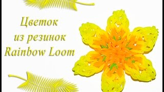 Rainbow loom flowers. Желтый цветок из резинок