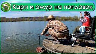 Отчеты о рыбалке поплавокат
