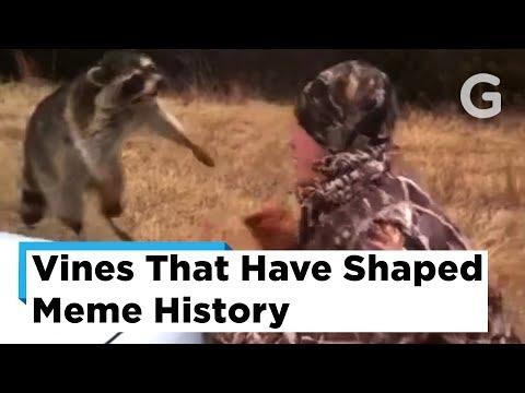 The 10 Vines That Shaped Meme History