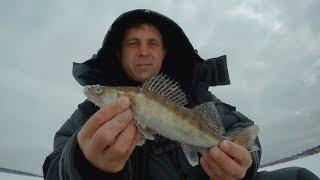 Отчет о рыбалке река жабня