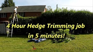 4 Hour Hedge Trimming Job, in under 5 minutes!