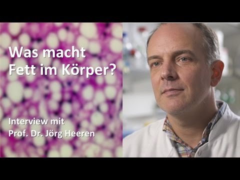Wenn Komplikationen beginnen bei Typ-1-Diabetes