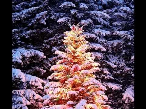 Boney M - Oh Christmas Tree
