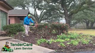 Best Landscape Maintenance Company