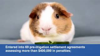 The Animal Welfare Act And USDA-APHIS