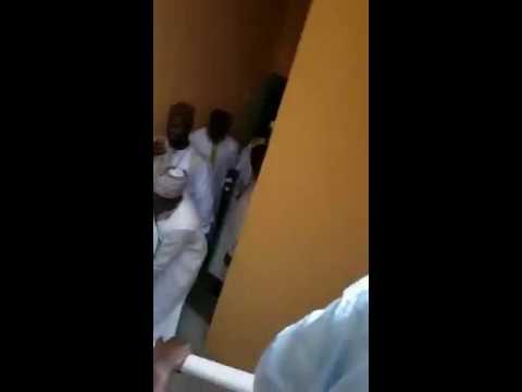 Arrival of Sheikh Tijani Niasse. Khalifa.