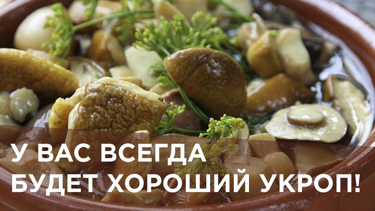 Маринованные грибы рецепты с фото простые