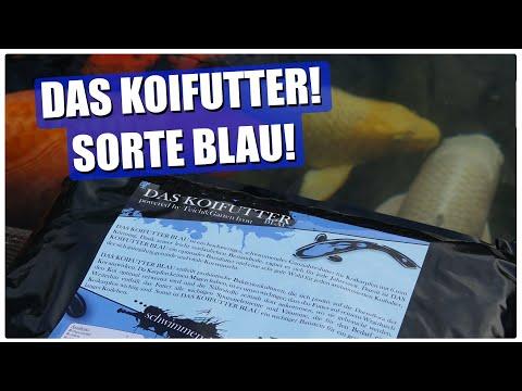 DAS KOIFUTTER BLAU