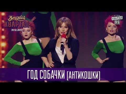 Год Собачки (Антикошки)   Новогодний Вечерний Квартал 2018