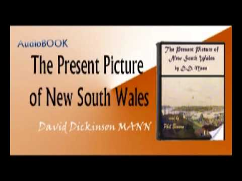 The Present Picture of New South Wales Audiobook Full In English