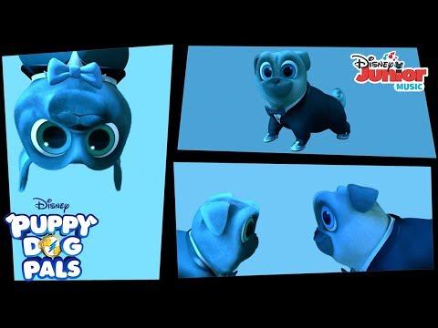Spy Puppies Music Video   Puppy Dog Pals   Disney Junior