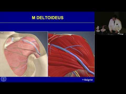 ICD-10-Knöchel-Verstauchung