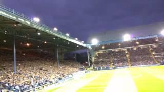 Celebrating Kieran Lee's goal    SWFC vs Brighton   13/05/2016