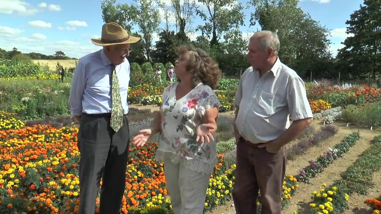 Sun Gardening Team at Mr Fothergill