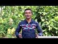 Download Jharkhand Rajya Gramin Bank Mobile Number Register / Change Kaise Kare? Jharkhand Gramin Bank Mp4 HD Video and MP3