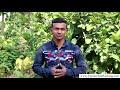 Download Jharkhand Rajya Gramin Bank Mobile Number Register / Change Kaise Kare? Jharkhand Gramin Bank HD Mp4 3GP Video and MP3