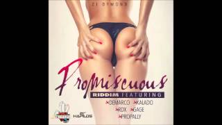 Demarco || Bad Gyal Anthem [Raw] || Promiscuous Riddim || Feb 2014