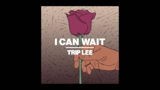 Trip Lee   I Can Wait