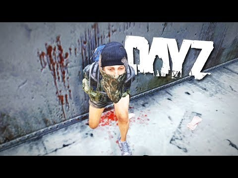 Bandit demands Trial By Combat in DayZ...