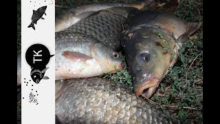 Рыбалка в краснодарском крае платные водоемы