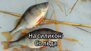 Съедобная резина для зимней рыбалки