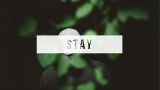 Dive - Stay