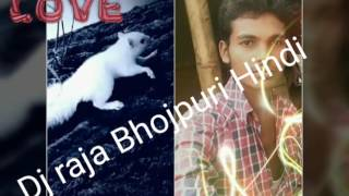 New Gana Pawan Singh Holi DJ Raju Bhojpuri Hindi New 2017