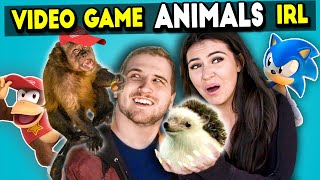 Meeting Video Game Animals In Real Life (React)